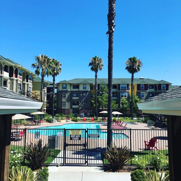 Our Gorgeous Amenities are only made better by California sunshine and the residents who use them! Here at The U you can chill out in the sun or the shade, Lounge with your friends or even study outdoors! Relaxation has never been so productive!  #theudavis #theu #davisca #davishousing #daviscalifornia #californialiving #uhouzz #ucdavis #ucdavis #ucd #housing #student #living #college #areuready #relax #amenities